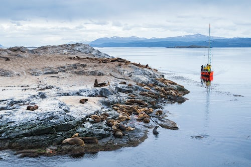 Argentina Travel Landscape Photography Beagle Channel sailing boat observing Sea Lion colony Ushuaia Tierra Del Fuego Patagonia Argentina South America