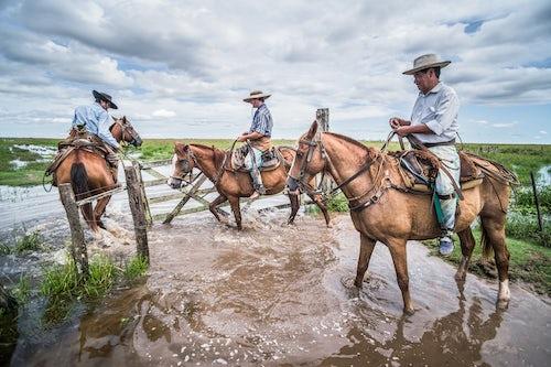 Argentina Travel Landscape Photography Gauchos on a traditional Argentinian cattle farm Estancia San Juan de Poriahu Ibera Wetlands Corrientes Province Argentina South America