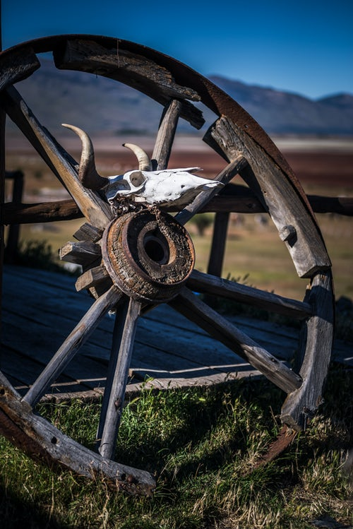 Argentina Travel Landscape Photography Old horse and cart wheel on an estancia at El Calafate Patagonia Argentina South America