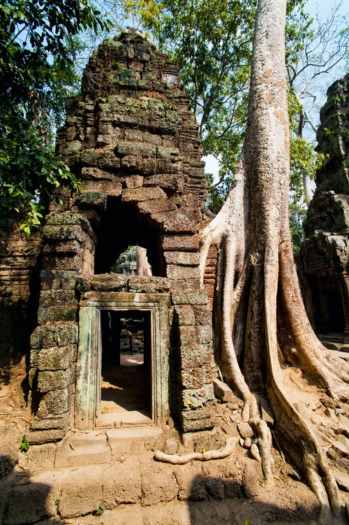 Cambodia Travel Photography Overgrown roots and ruins at Ta Prohm Temple Angkor Temples Cambodia Southeast Asia Indochina Asia Southeast Asia