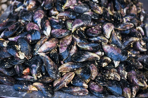 Chile Travel Landscape Photography Mussels at Angelmo fish market Puerto Montt Chile South America