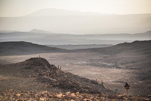 Chile Travel Landscape Photography Trekking at sunset in Cactus Valley Los Cardones Ravine Atacama Desert North Chile South America