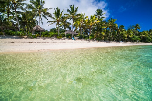 Cook Islands Landscape Travel Photography Crystal clear Pacific Ocean water and tropical white sandy beach with palm trees at Titikaveka Rarotonga Cook Islands background with copy space 2