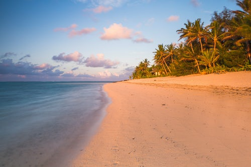 Cook Islands Landscape Travel Photography Tropical beach with palm trees at sunrise Rarotonga Cook Islands 2