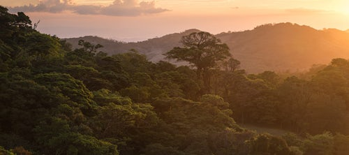 Costa Rica Travel Landscape Photography Monteverde Cloud Forest Reserve at sunset Puntarenas Costa Rica Central America