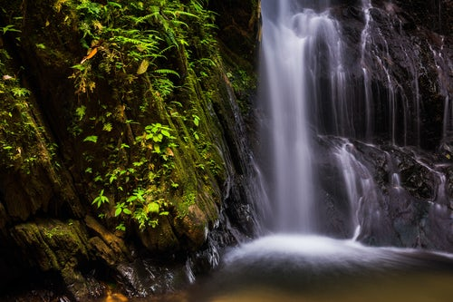Ecuador Travel Photography Cucharillos Waterfall in the Choco Rainforest Ecuador This area of jungle is the Mashpi Cloud Forest in the Pichincha Province of Ecuador South America
