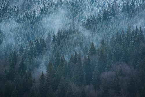 France Landscape Photography Winter landscape Avoriaz Ski Area Port du Soleil Auvergne Rhone Alpes Alps France Europe 2