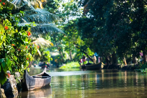India Travel Photography Dugout canoe fishing boat in the backwaters near Alleppey Alappuzha Kerala India
