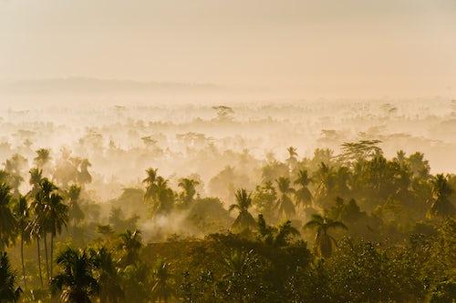 Indonesia Landscape Travel Photography Early morning mist on the Kedu Plain at sunrise Borobudur Temple UNESCO World Heritage Site Yogyakarta Java Indonesia Asia Asia background with copy space