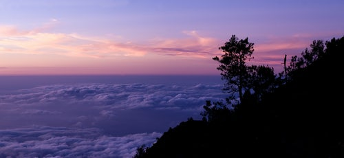 Indonesia Landscape Travel Photography Panoramic Landscape Photo Above the Clouds of a Tree Silhouetted at Sunset from Mount Rinjani Lombok Indonesia Asia background with copy space