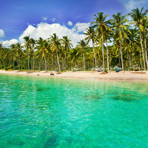 Indonesia Travel Photography Turquoise water and palm trees lining Nippah Beach Indonesia Southeast Asia Asia Asia background with copy space