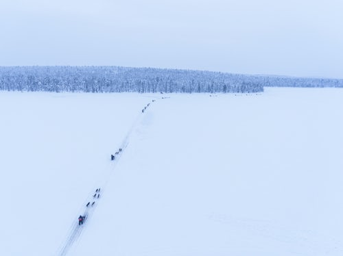 Lapland Finland Adventure Travel Photography Aerial of Husky dog sledding on a frozen snow covered lake into a winter forest landscape and trees in the Lapland landscape in a forest in Finland drone