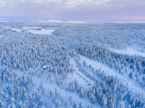 Lapland Finland Drone Landscape Photography Aerial photo of a snow covered winter forest full of trees at sunset in the Arctic Circle in Finnish Lapland Finland drone