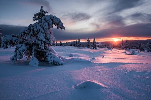 Lapland Finland Landscape Photography Snow covered winter landscape at sunset Lapland Pallas Yllästunturi National Park Finland 2