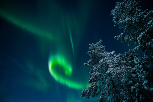 Northern Lights Landscape Photography Amazing bright green Northern Lights display Aurora Borealis over trees in a forest in the beautiful colourful night sky Lapland Finland Arctic Circle