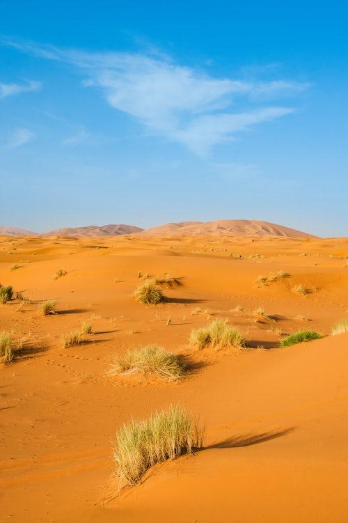 Morocco Travel Landscape Photography Sand dune landscape at Erg Chebbi Desert Sahara Desert near Merzouga Morocco North Africa Africa background with copy space