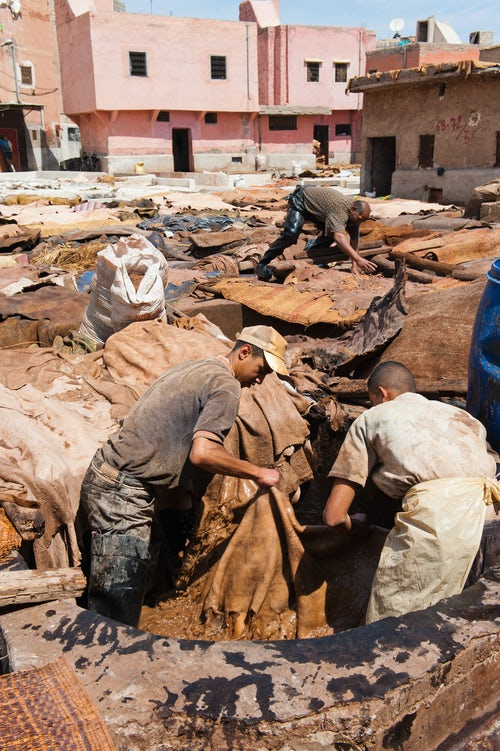 Morocco Travel Photography Men working at a tannery in Marrakech old Medina Morocco North Africa Africa