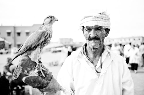 Morocco Travel Portrait Photography Black and white portrait photo of a man with a bird of prey in Djemaa El Fna Square Marrakech Marrakesh Morocco North Africa