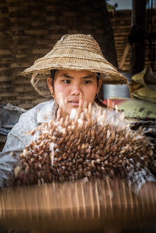 Myanmar Burma Portrait Travel Photography Documentary Portraiture Portrait of a woman sorting seeds in the hills around Hsipaw Township Shan State Myanmar Burma