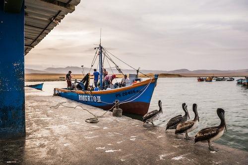 Peru Travel Photography Fishing boat at fishing harbour in Paracas National Reserve Reserva Nacional de Paracas Ica Peru South America