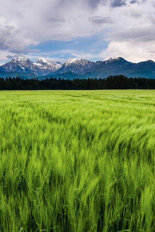 Slovenia Landscape Photography Kamnik Alps seen from near Kranj Slovenia Europe