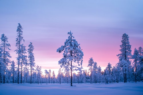 Commercial Travel Photographer London Lapland Advertising Photography 018 of 033