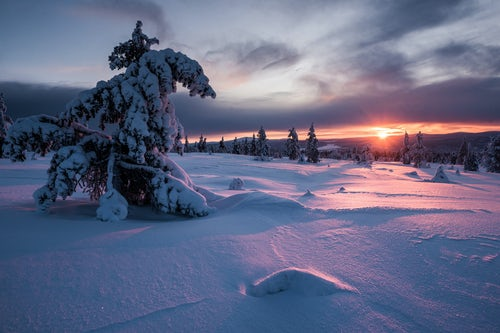 Commercial Travel Photographer London Lapland Advertising Photography 022 of 033
