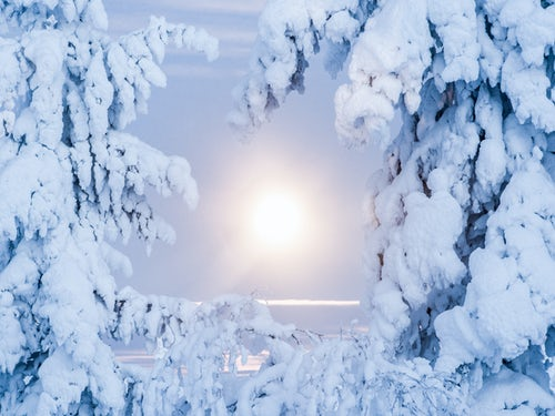 Landscape Photography by Professional Freelance UK Landscape Photographer Super moon full moon landscape of snow covered trees forest and remote winter wilderness in Lapland Finland Arctic Circle Europe